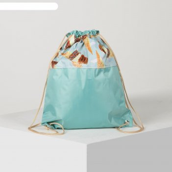 4805-а п-420 сумка-мешок для обуви 34*1*41, отд на шнурке, бирюза/морож