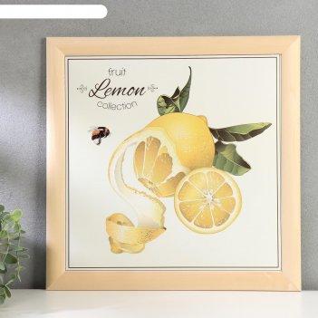 Постер дерево фруктовая коллекция. лимон 35х35 см, ясень