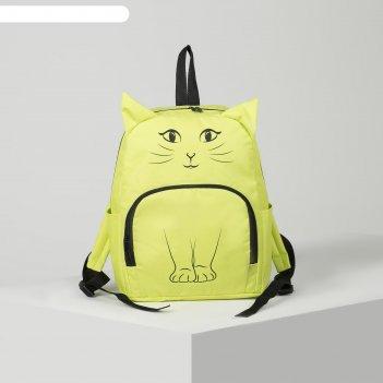 Рюкзак молод 2091.1, 28*15*35, отд на молнии, н/карман, 2 бок кармана, лим