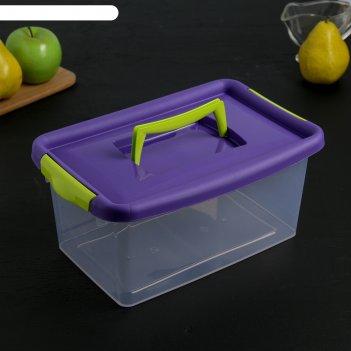 Контейнер для хранения 4 л, цвет фиолетовый