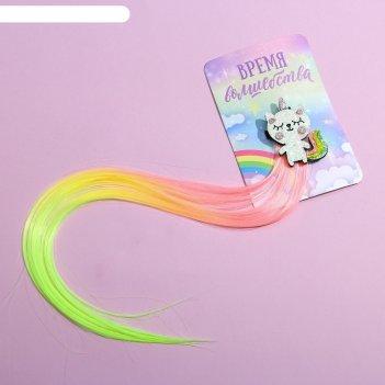 Заколка-парик «время волшебства», 40 х 8 см