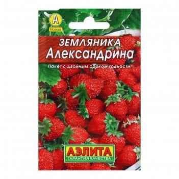 Семена земляника александрина, 0,05 г