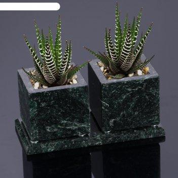 Горшки для цветов суккулент,2 шт. на подставке с магнитами, змеевик, 7,5х1