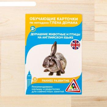 Обучающие карточки по методике г. домана домашние животные и птицы на англ