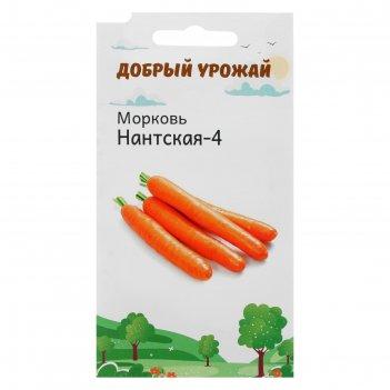 Семена морковь нантская-4 1 гр