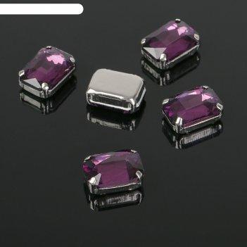 Стразы в цапах (набор 5шт), 10*14мм, цвет фиолетовый в серебре