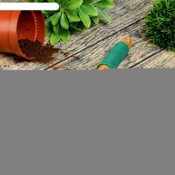 Рыхлитель, длина 30 см, 3 зубца, деревянная ручка с поролоном.