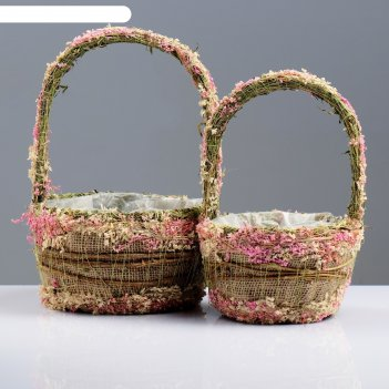 Набор корзин «нежность», 2 шт, 20x12/32 см, 15x11/27 см, сухоцветы