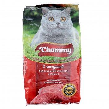 Сухой корм chammy для кошек, говядина, 1,9 кг