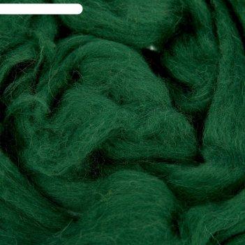 Шерсть для валяния 100% полутонкая шерсть 50 г (110, зеленый)