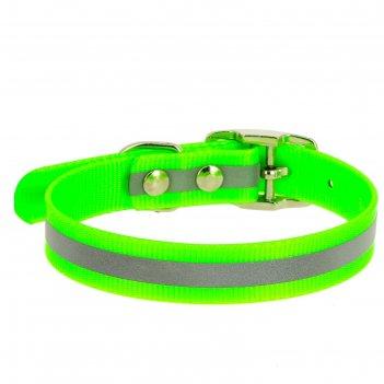 Ошейник из биотана со светоотражающей полосой, ош 24-28 х 1,2 см, зелёный