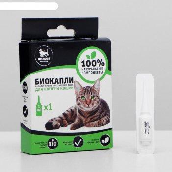 Биокапли пижон premium для котят и кошек от блох и клещей, 1х1мл