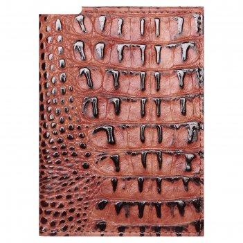 Обложка для паспорта и автодокументов, цвет коричневый кайман