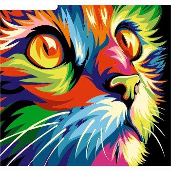 Фреска кот, а3
