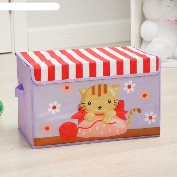 Короб для хранения с крышкой 40х25х25 см котя