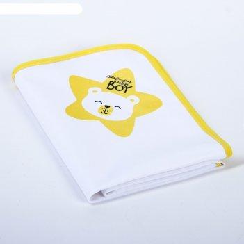 Пелёнка непромокаемая детская «мишка baby bear», 50 x 70 см