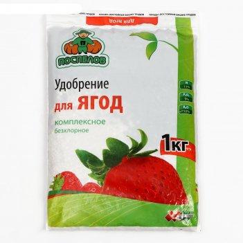 Удобрение для ягод клубника, земляника, 1 кг