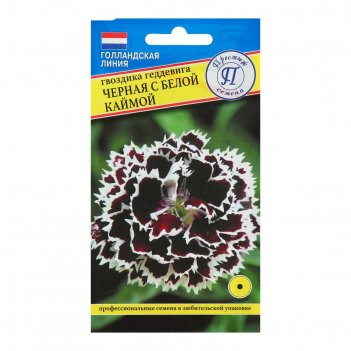 Семена гвоздика черная с белой каймой, 15 шт