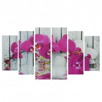 Картина модульная на подрамнике орхидея фаленопсис  150*84 см