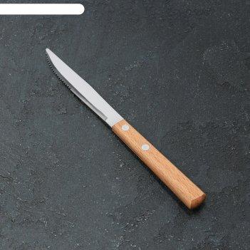 Нож столовый «эко-стейк», h=20 см