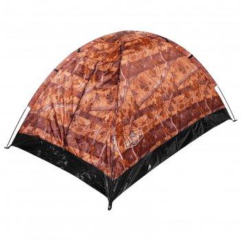 Палатка туристическая sande ii 205х150х105 см, 2-местная, цвет лес