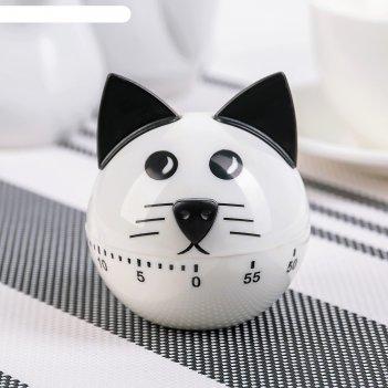 Таймер кухонный котёнок, механический, цвет микс