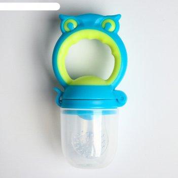 Ниблер с силиконовой сеточкой совушка, цвет голубой