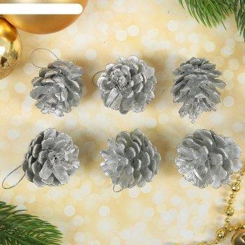 Набор природного декора серебряные шишки, набор 6 шт.