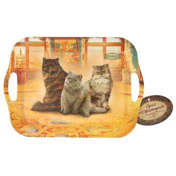 Поднос серия персидская кошка
