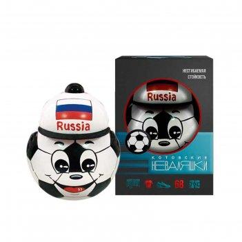 Неваляшка футбольный мяч в художественной упаковке  6с-030