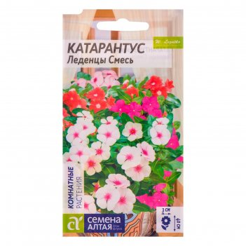 Семена комнатных растений катарантус леденцы, мн, цп, 0,05 г