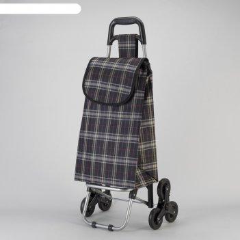 Сумка хозяйственная на колёсах, отдел на шнурке, наружный карман, 6 колёс,