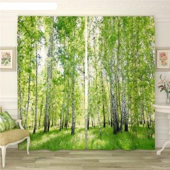 Фотошторы «березовый лес 2», размер 145 x 260 см, габардин