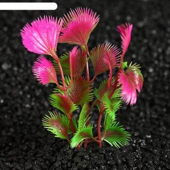 Растение искусственное аквариумное на подставке под камень, 14 х 9 х 9 см