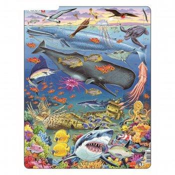 Пазл киты, 66 деталей (fh20)