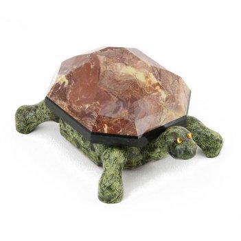 Шкатулка черепаха змеевик, креноид