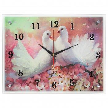 Часы настенные, серия: животный мир, два голубя , 30х40  см, микс