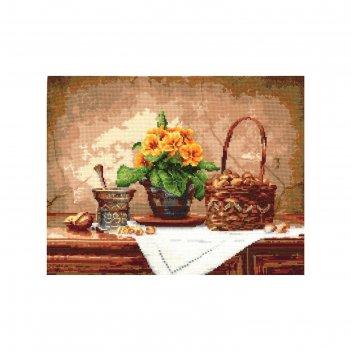 Набор для вышивания натюрморт с орехами