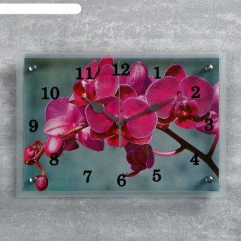 Часы настенные, серия: цветы, розовая орхидея, 25х35  см, микс