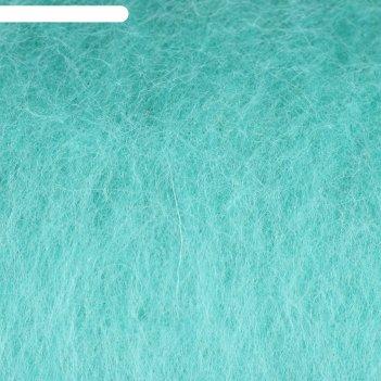 Шерсть для валяния кардочес 100% полутонкая шерсть 100гр (025 мята)