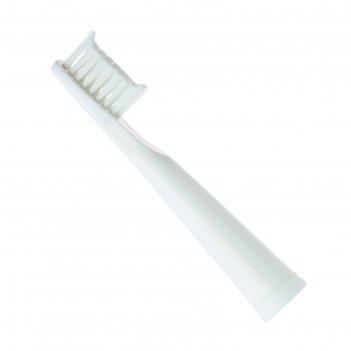 Насадка sc medica sp-23, для зубной щетки sonicpulsar cs-232, 2 штуки