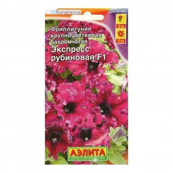 Семена цветов фриллитуния экспресс f1 рубиновая крупноцветковая бахромчата
