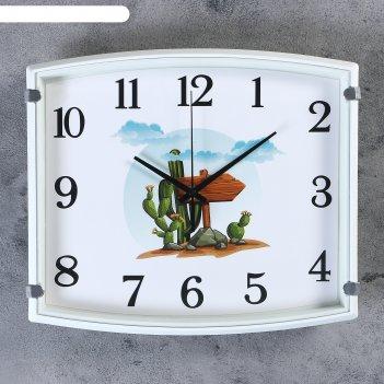 Часы настенные, серия: детские, кактус,  30х3х27 см, 1 аа,  плавный ход