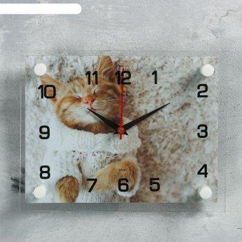 Часы настенные, серия: животный мир, мур-мур, 20х26 см