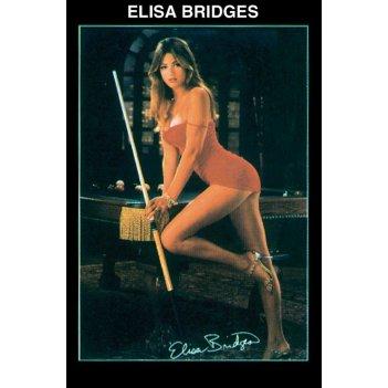 Постер elisa bridges 60?88см