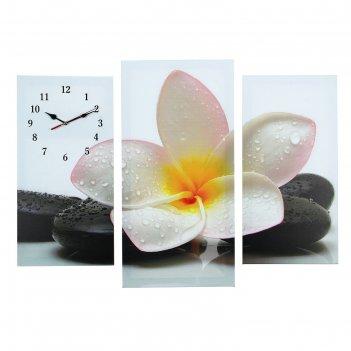 Часы настенные модульные «цветок на камнях», 60 x 80 см