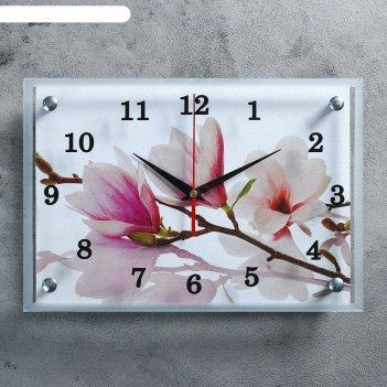 Часы настенные, серия: цветы, бело-сиреневые цветы, 25х35  см, микс
