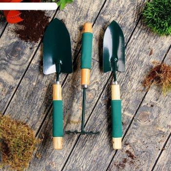 Набор садового инструмента, 3 предмета: совок узкий, совок широкий, грабли