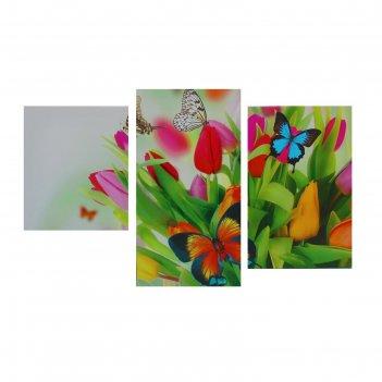Картина модульная на подрамнике  бабочки на тюльпанах  30х35,30х46,30х56 с