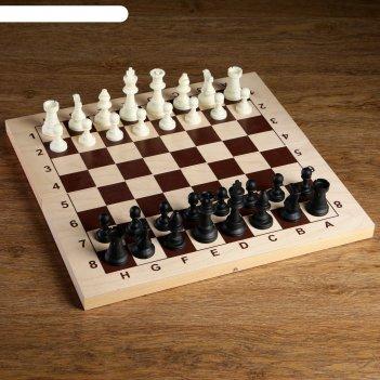 Фигуры шахматные пластиковые  (король h=9 см, пешка 4.1 см)